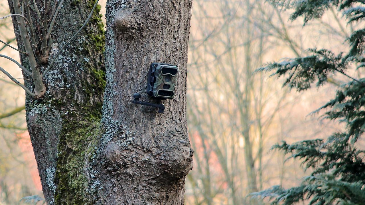 Installer une caméra de surveillance IP