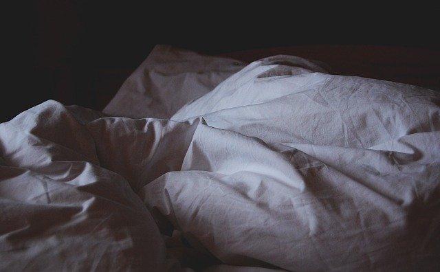 Le déplacement des punaises de lit